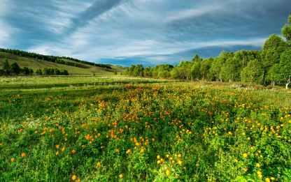 agriculture beautiful bogart village bright